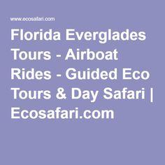 Florida Everglades Tours - Airboat Rides - Guided Eco Tours & Day Safari   Ecosafari.com