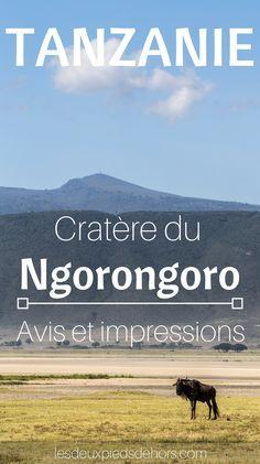 Vous partez en voyage safari en Afrique ? En Tanzanie ? Venez découvrir les merveilles du parc national du Ngorongoro lors d'un safari dans le cratère du Ngorongoro. Visite guidé de ce magnifique parc africain – Safari pas cher en Afrique – Comment aller en Tanzanie – Billet d'avion pas cher pour la Tanzanie.
