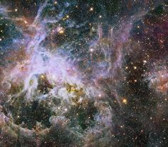 O interior da Nebulosa de Tarântula  Um tesouro de 800 mil estrelas no coração da galáxia.