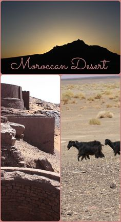 The Moroccan Desert is vast and full of different beautiful landscapes. For more photos visit the blog