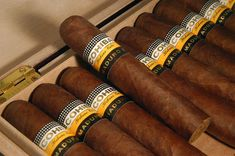 """Perhaps the most famous cohiba cuban cigars are the """"Cohibas"""", delicate and flavorful cigars that have smokers all over the planet. Click this site http://www.cubancigaronline.com/cuban-cigars/cohiba-cuban-cigar for more information on cohiba cuban cigars. But let's not forget about other unique brands too: """"Montecristo"""", """"Partagas"""" and many more manufacturers make Cuba the first and most important tobacco producer and supplier in the world, and this is a well deserved award."""