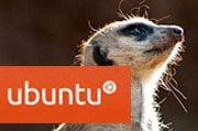 Say Goodbye to Ubuntu Linux 10.10 'Maverick Meerkat'
