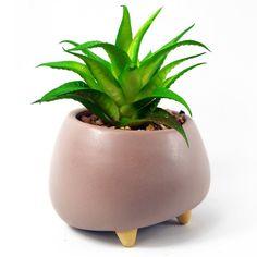 Artificial Topiary, Artificial Plants And Trees, Artificial Succulents, Planting Succulents, Trees To Plant, Plant Leaves, Large Plant Pots, Large Plants, Faux Plants