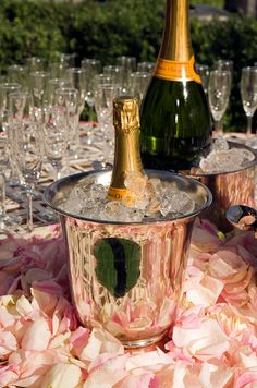 iced champagne surrounded by rose petals.....