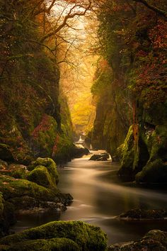 Fairy Glen Gorge in North Wales.