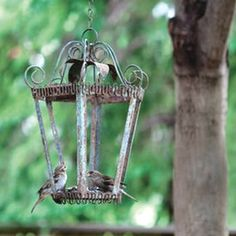 Love this..use an old light for a bird feeder!