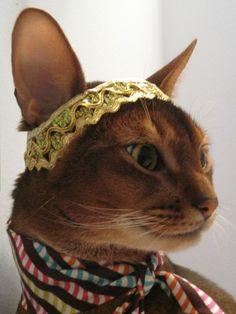 Gold Metallic Trim Headband by Cat Atelier.