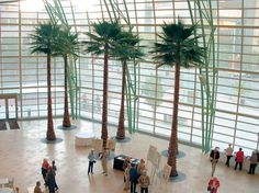 Massive palm trees installed at the Schuster Center in Dayton, Ohio.