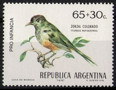 Rufous-bellied Thrush stamps - mainly images - gallery format Argentine, Wild Creatures, Vintage Stamps, Mail Art, Stamp Collecting, Around The Worlds, Birds, Gallery, Image