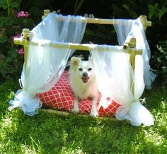 Sew DoggyStyle: DIY Dog Bed - Bamboo Frame or could even use pvc pipe Dog Bed Frame, Diy Dog Bed, Diy Bed, Diy Canopy, Animal Projects, Diy Projects, Pet Beds, Doggie Beds, Puppy Beds