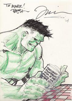The Hulk by Jim Lee