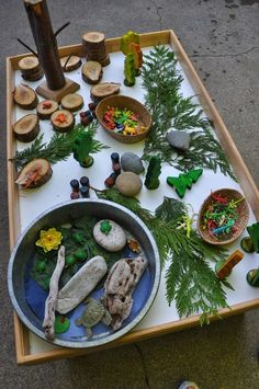 Natural Loose Parts provocation for creating or storytelling from Stomping in the Mud! Natural Loose Parts provocation for creating or storytelling from Stomping in the Mud! Reggio Emilia, Play Based Learning, Early Learning, Nature Activities, Preschool Activities, Micro Creche, Reggio Classroom, Outdoor Classroom, Tree Study