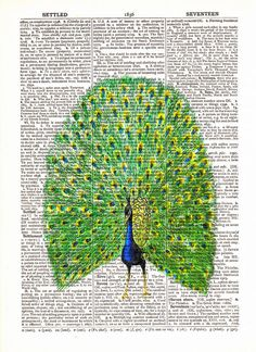 $10 Vintage Peacock Dictionary Book Page Art Print