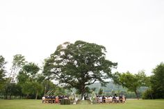 Ceremony under an old Oak tree - Backyard Alabama Wedding from Susan Hudson Photography