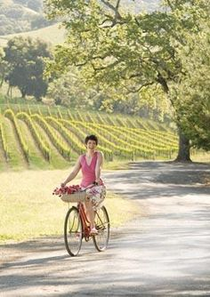 Popular Bike Itineraries: Cycling through Wine Country. A wonderful way to keep fit while on vacation here in Napa! Sonoma Wineries, Napa Sonoma, Sonoma Valley, Sonoma County, Napa Valley, Sonoma California, California Travel, California Wine, Northern California