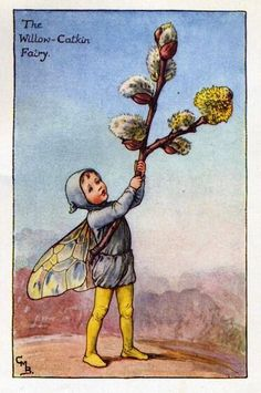 Willow-Catkin Flower Fairy Vintage Print by Cicely Mary Barker printed c.1927 – The Willow-Catkin Flower Fairy is one of Cicely Barkers Spring Flower Fairies.