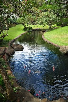 47 amazing backyard ponds and water garden landscaping ideas 41 enchanting small gardens landscape design ideas Pond Landscaping, Tropical Landscaping, Landscaping Software, Backyard Shade, Backyard Ponds, Garden Ponds, Koi Ponds, Terrace Garden, Garden Trees