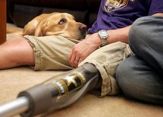 A service dog with a soldier, helped by Dog Bless You . . . helping soldiers with PTSD.