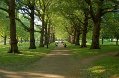 Green Park - Pathway by Hachimaki, via Flickr