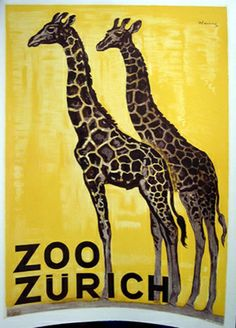 A vintage poster of two giraffes. This image uses  two main colours black and yellow using shades as well. First thing we look at is the girrafes  skin, an alteration pattern which makes it more complex. Looking at the background its using lines that makes an illusion seeing an outdoor area.