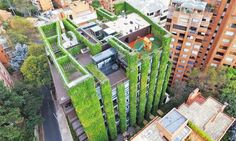 Behold: the largest vertical garden in the world. Located in Bogota, Colombia, the Santalaia building is completely covered with a lush layer of 85,000 plants that span 3,100 square meters (33,368 square feet). A vertical garden of this size can produce enough oxygen for more than 3,100 people every year, process 1,708 pounds of heavy metals, filter more than 2,000 tons of harmful gases and catch more than 881 pounds of dust.