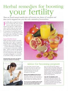 Herbal remedies for boosting your fertility