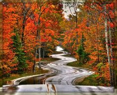 Door County, WI..the long and winding road.. Beautiful in Autumn.