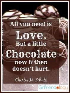 Friendship Quotes About Chocolate ~ Images and thoughts on friendship project fellowship. Friendship is sharing last piece of chocolate funny. Friendship quotes image at hippoquotes. Quotes about frie. Chocolate Humor, Chocolate Quotes, Chocolate Pictures, Chocolate Delight, Death By Chocolate, I Love Chocolate, Chocolate Lovers, Craving Chocolate, Decadent Chocolate
