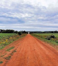 If they aren't paved, roads on Prince Edward Island look like this; I love the color!