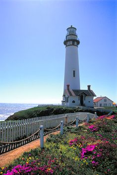 lighthouses of california | of lighthouses pigeon point lighthouse with flowers order picture of ...