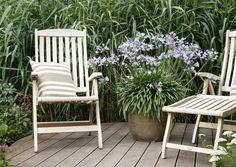 Schöner Garten ohne Gießen