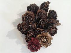 Cedar Rose Cones - 100 roses/cones on Etsy, $40.00