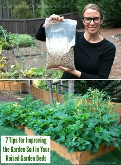 7 Tips for Improving the Garden Soil in Your Raised Garden Beds, Garden Soil