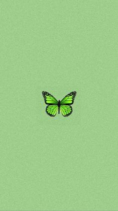 Hype Wallpaper, Iphone Wallpaper Tumblr Aesthetic, Green Wallpaper, Aesthetic Pastel Wallpaper, Tumblr Wallpaper, Aesthetic Wallpapers, Butterfly Wallpaper Iphone, Cartoon Wallpaper Iphone, Iphone Background Wallpaper