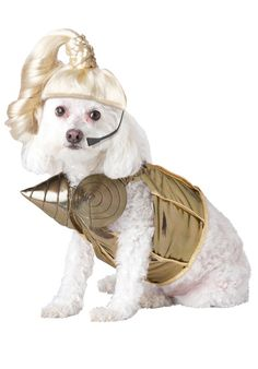 I think Zoey wants to be this for Halloween @Amy Eubank