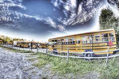 school bus - http://wt2010.info