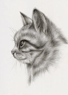 ilustración de Peony Yip