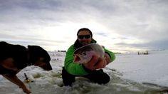 Huge Rainbow Trout Ice Fishing Alberta - Jaw Jacker and GoPro Hero 3+