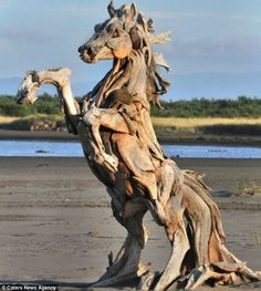 Jeffro Uitto | Driftwood sculpture. Love this artist's work. Incredible. Trees just keep on giving.