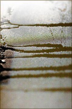http://in-errances.blog.lemonde.fr/files/2013/01/sillages-110.jpg