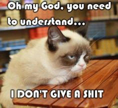 Grumpy cat quotes, grouchy quotes, grumpy cat jokes, grumpy cat humor, grumpy cat pictures …For more hilarious quotes and jokes funny visit www. Gato Grumpy, Grumpy Cat Humor, Cat Memes, Funny Memes, Grumpy Kitty, Cats Humor, Hilarious Quotes, Sunday Quotes Funny, Meme Meme