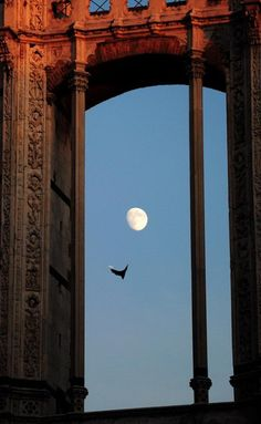 Looking at the moon in Toscana...