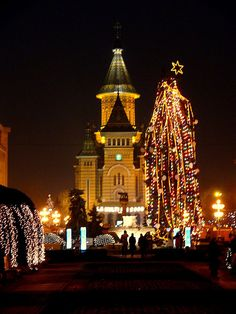 Christmas in Piața Operei, Timisoara, Romania, my home town ❤️ Christmas Tree Pictures, Beautiful Christmas Trees, Christmas Lights, Christmas Decor, Christmas Ideas, Merry Christmas, Bulgaria, The Places Youll Go, Places To See