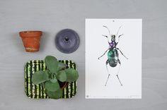 Nordic Design Collective - Calendar 2015