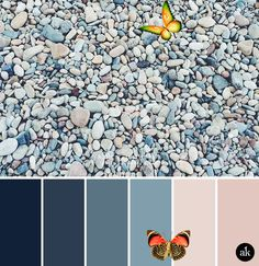 """a rock-inspired color palette // navy, indigo, ocean blue, peach (nude), pink<br> While trying to think of a few rock puns, I took a 10-minute break to memorize the lyrics to """"We Will Rock You."""" I can already tell it's going to be a productive day. Rock Puns, Blue Peach, We Will Rock You, Productive Day, Indigo, Kitchen Design, How To Memorize Things, Lyrics, Palette"""