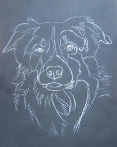 Blog Du Peintre Animalier Cindy Barillet Portraits D Animaux Portrait De Border Collie Pastels Border Collie Art Dog Art Dog Paintings