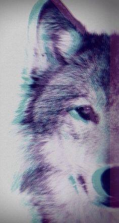 Image - Fond d'écran :3 - Blog de Panda--Kawaii - Skyrock.com