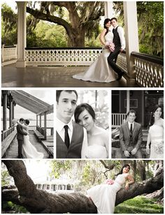 New Orleans Wedding Photography by Sara Kelley Photography- Look at that top shot, beautiful, but I love the In the Tree one, perfect for YOU