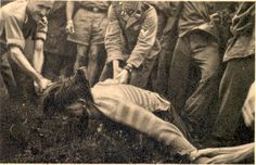 These men belonged to the SS-Polizei-Gebirgsjäger-Regiment 18. The photo showing the beheading of a captured Yugoslavian partisan was taken in the Slovenian village Renčah pri Gorici in March 1942.