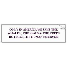 ONLY IN AMERICA WE SAVE THE WHALES , THE SEALS ... BUMPER STICKERS